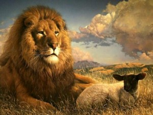 lionmouton